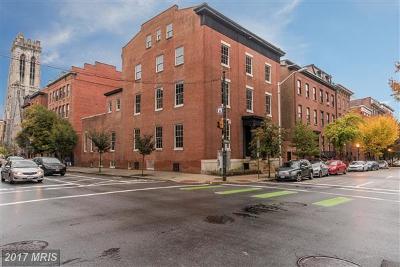 Baltimore Multi Family Home For Sale: 20 W Madison Street