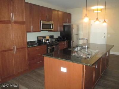 Baltimore City Rental For Rent: 1201 Charles Street #5A