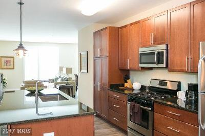 Baltimore City Rental For Rent: 1201 Charles Street #4A