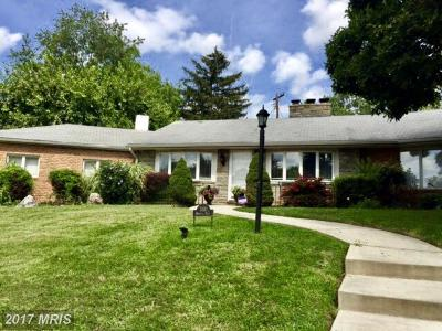 Baltimore Single Family Home For Sale: 3110 Moravia Road