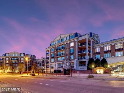 Baltimore City Rental For Rent: 801 Key Highway #344