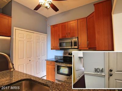 Mount Vernon Condo For Sale: 529 Charles Street #104