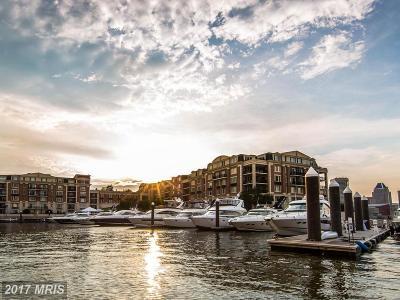 Baltimore City Rental For Rent: 801 Key Highway #316