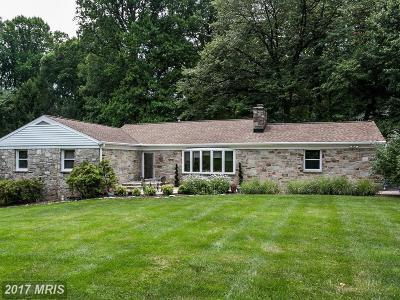 Baltimore Single Family Home For Sale: 1312 Margarette Avenue