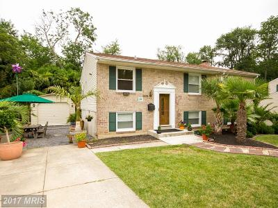 Reisterstown Single Family Home For Sale: 306 Cherry Chapel Road