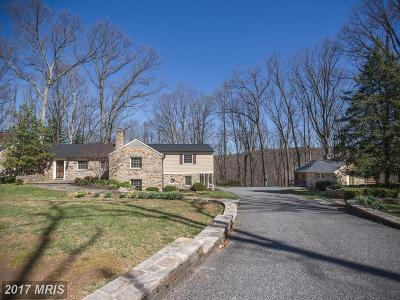 Cockeysville Single Family Home For Sale: 1126 Ivy Hill Road