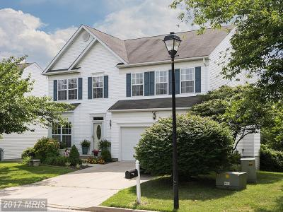 Owings Mills Single Family Home For Sale: 4707 New Town Boulevard