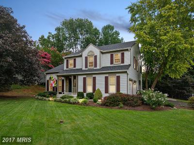 Ellicott City Single Family Home For Sale: 707 White Oaks Avenue