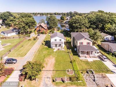 Baltimore Single Family Home For Sale: 213 Antietam Road