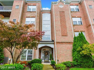 Perry Hall Condo For Sale: 9500 Amberleigh Lane #M
