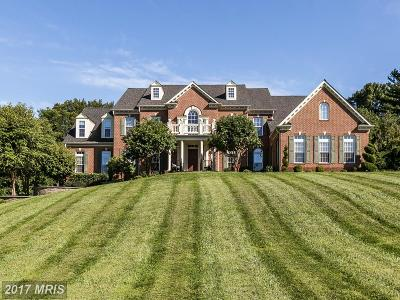 Owings Mills Single Family Home For Sale: 3408 Starlite Court
