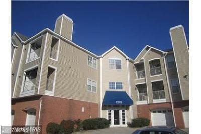 Baltimore Rental For Rent: 7210 Bogley Road #302