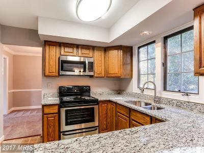 Baltimore Single Family Home For Sale: 9605 Northwind Road