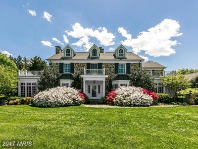 Baltimore Single Family Home For Sale: 601 Seminary Avenue E