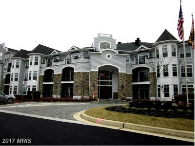 Baltimore Rental For Rent: 3100 Stone Cliff Drive #307
