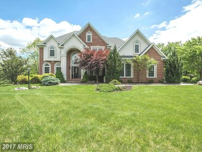 Lutherville, Lutherville Timonium, Lutherville-timonium, Timonium Single Family Home For Sale: 10370 Pot Spring Road