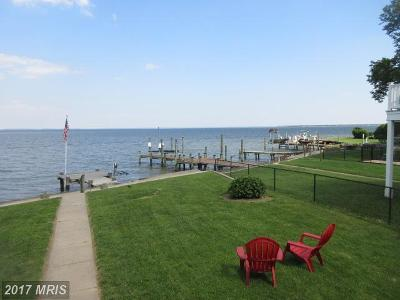 Baltimore Single Family Home For Sale: 2724 Holly Beach Road