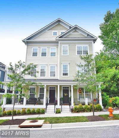 Towson Townhouse For Sale: 29 Willow Avenue