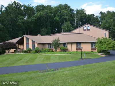 Reisterstown Single Family Home For Sale: 13025 Heil Manor Drive