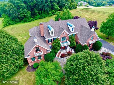 Reisterstown Single Family Home For Sale: 11 Woodfield Court