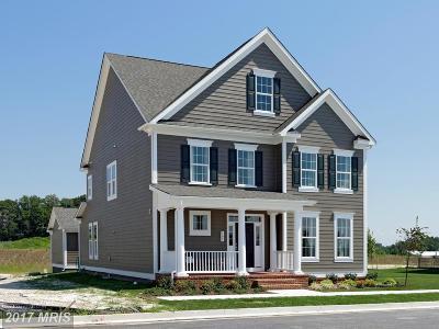 Baltimore Single Family Home For Sale: 6501 Greenleigh Avenue