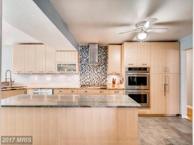 Reisterstown Single Family Home For Sale: 213 Sacred Heart Lane
