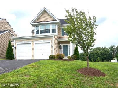 Martinsburg Single Family Home For Sale: 294 Bashore Drive