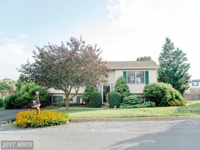 Martinsburg Single Family Home For Sale: 128 Elementary