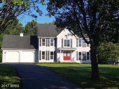 Bunker Hill Single Family Home For Sale: 390 Charming Lane