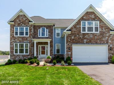 Martinsburg Single Family Home For Sale: 445 Holland Drive