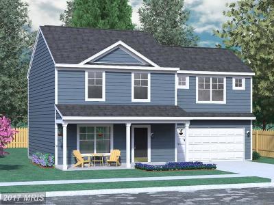 Martinsburg Single Family Home For Sale: Wren Street N