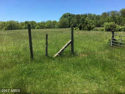 Martinsburg Residential Lots & Land For Sale: 1270 Nipetown