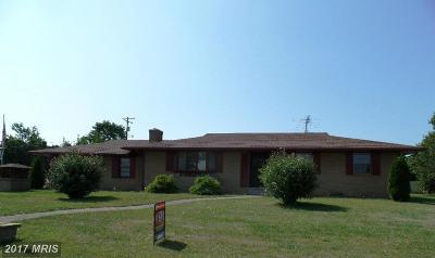 Martinsburg Single Family Home For Sale: 151 Princeton Street