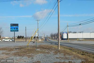 Martinsburg Residential Lots & Land For Sale: 5029 Williamsport Pike