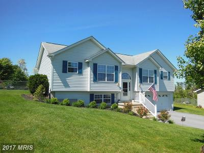 Hedgesville Single Family Home For Sale: 370 Pacific Blvd