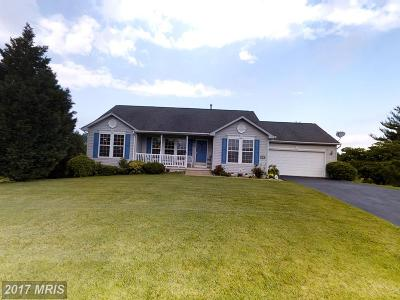 Martinsburg Single Family Home For Sale: 328 Hook Drive