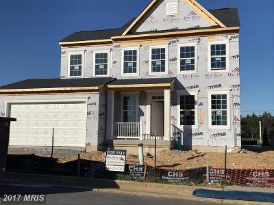 Bunker Hill Single Family Home For Sale: Ian Court #LOT 1