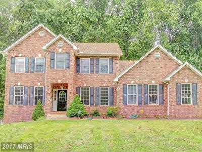 Single Family Home For Sale: 231 Still Water Lane