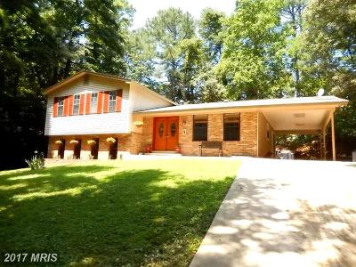 Lusby Single Family Home For Sale: 13095 Saint Johns Creek Road