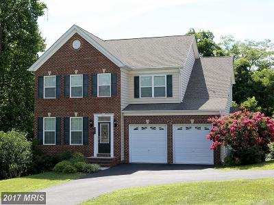 Chesapeake Beach Single Family Home For Sale: 3678 Middle Ground Court