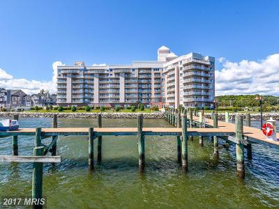 Chesapeake Beach Condo For Sale: 8501 Bayside Road #PH3