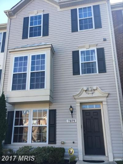 Chesapeake Beach Townhouse For Sale: 7879 Ivy Terrace #C-3