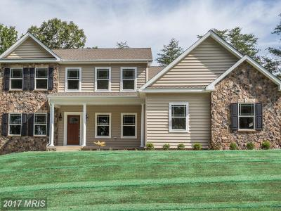 Single Family Home For Sale: 213 Dismondy Drive