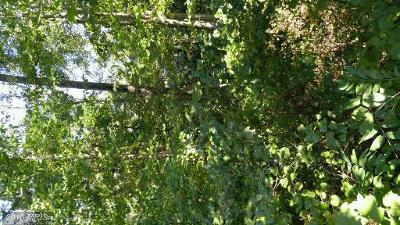 calvert Residential Lots & Land For Sale: 360 Thunderbird Drive