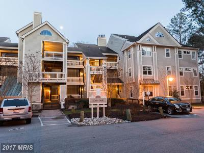 Calvert, Charles, Saint Marys Condo For Sale: 1101 Back Creek Loop #1101