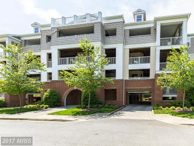 Dowell Condo For Sale: 13824 Reef Way #301