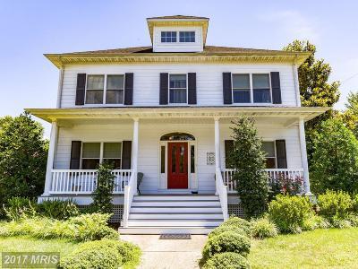 Solomons Single Family Home For Sale: 14251 Calvert Street