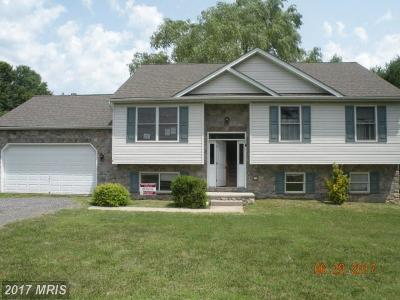 Perryville Single Family Home For Sale: 537 Charles Street