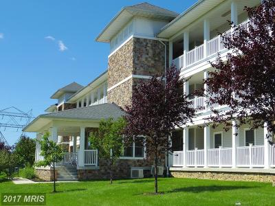 Owens Landing Rental For Rent: 231 Roundhouse Drive #3D