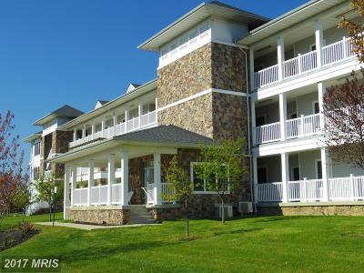 Owens Landing Rental For Rent: 231 Roundhouse Drive #2J
